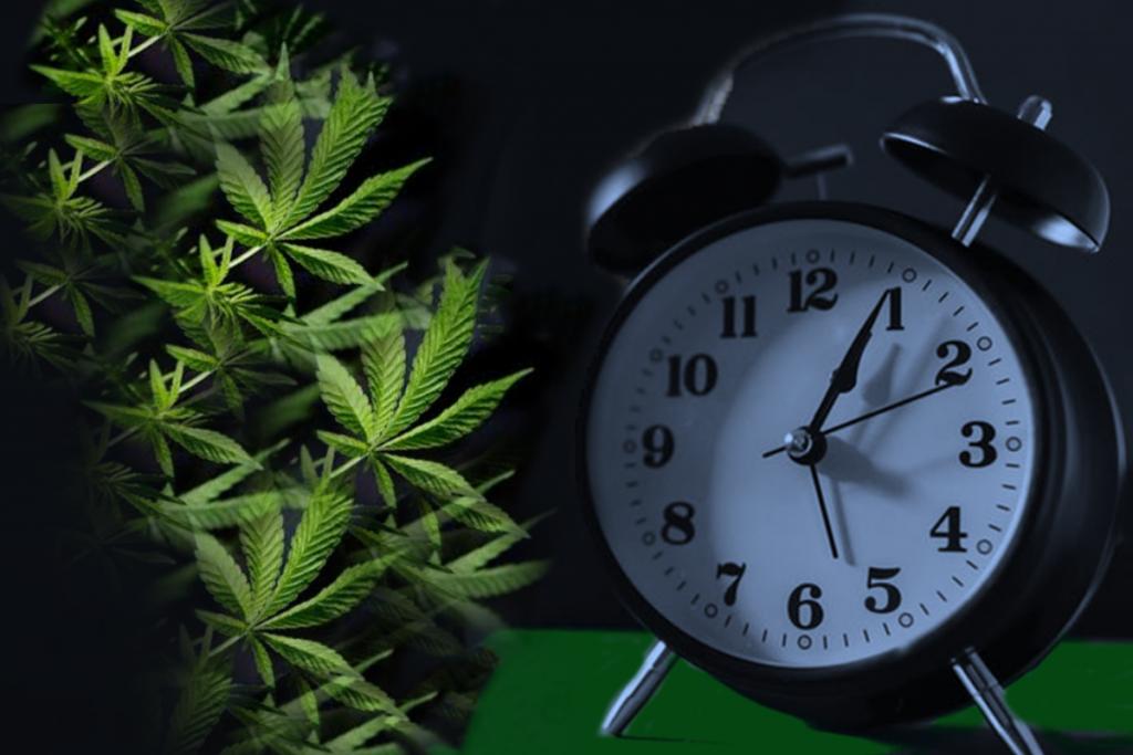 κάνναβη και αϋπνία cannabis street