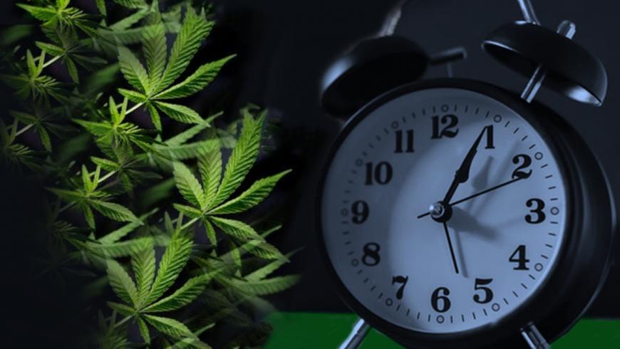 CBD και αϋπνία: Οφέλη, Παρενέργειες, και Θεραπεία